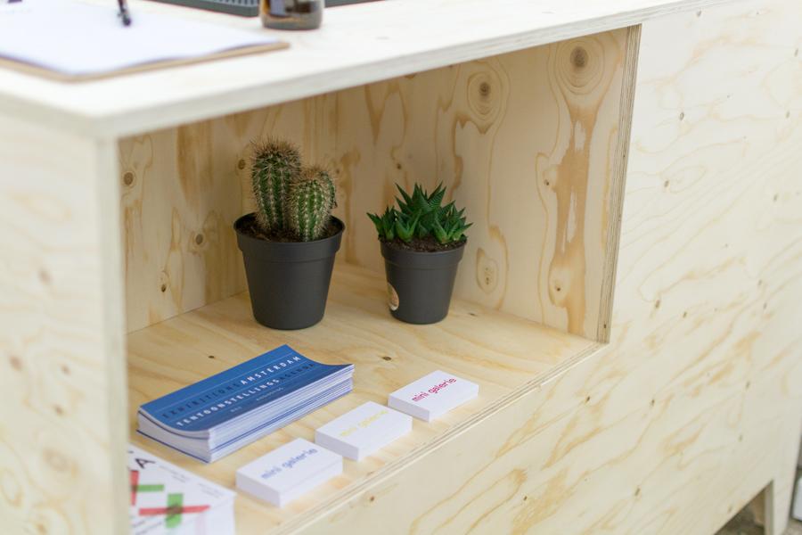 cactus-toonbank